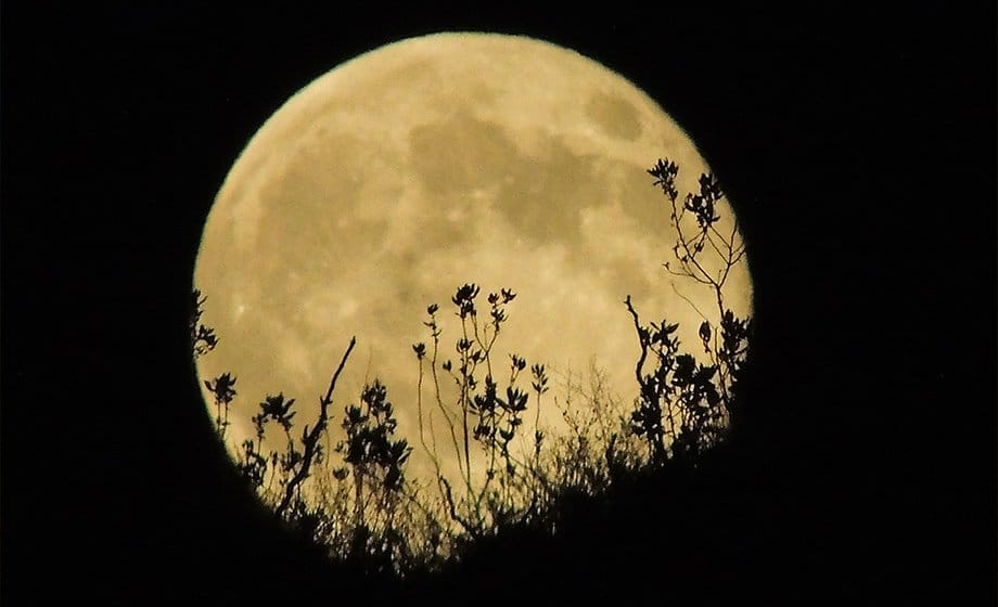 Full Moon and the Lunar Eclipse Meditation and Ritual