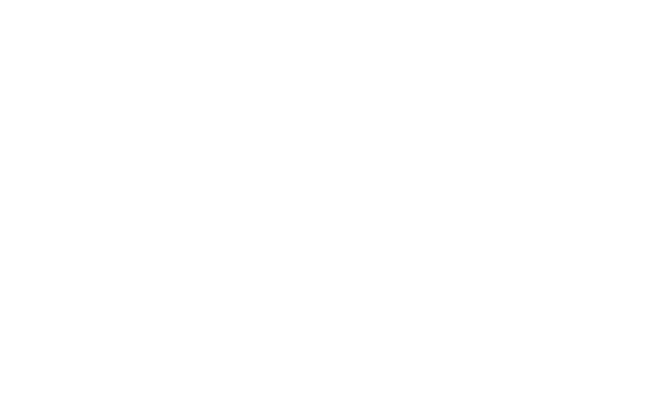 The Amanda Sophia Blog