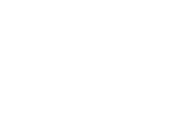 The Amanda Sophia Courses